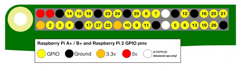 Rasp_pins_2